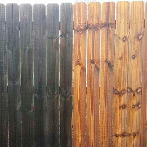 Fence and Deck Restoration